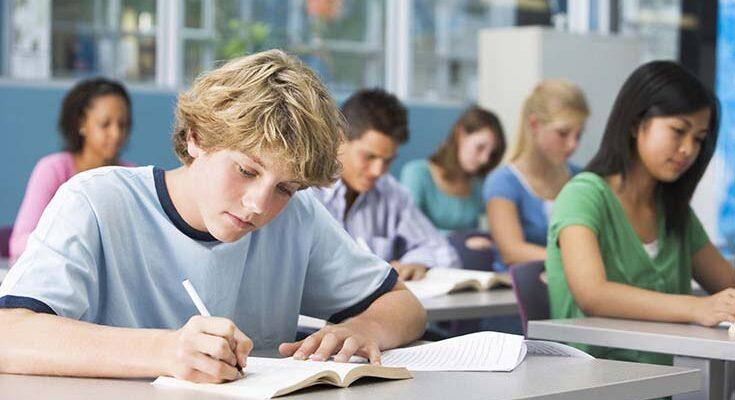 Школьные знания в жизни взрослого